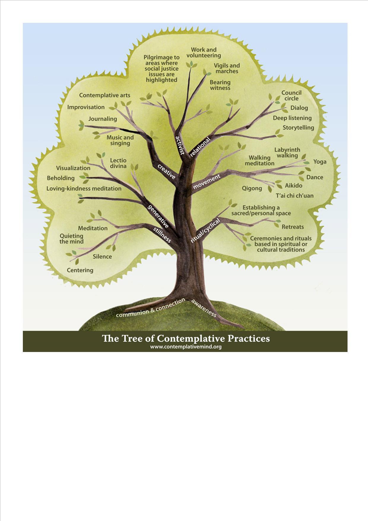 hillis tree of life pdf